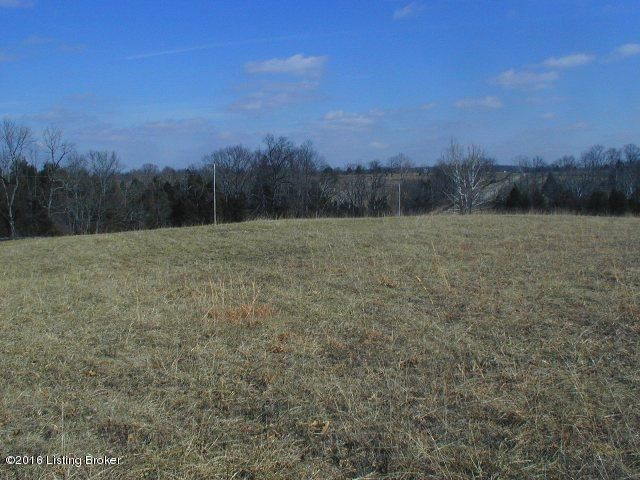 Land for Sale at 1 Forest View La Grange, Kentucky 40031 United States