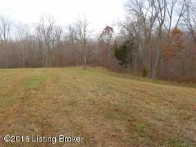 Land for Sale at 8650 Lawrenceburg Chaplin, Kentucky 40012 United States
