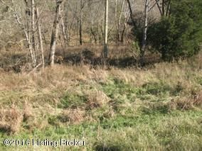 Land for Sale at 6200 MT. ZION Willisburg, Kentucky 40078 United States