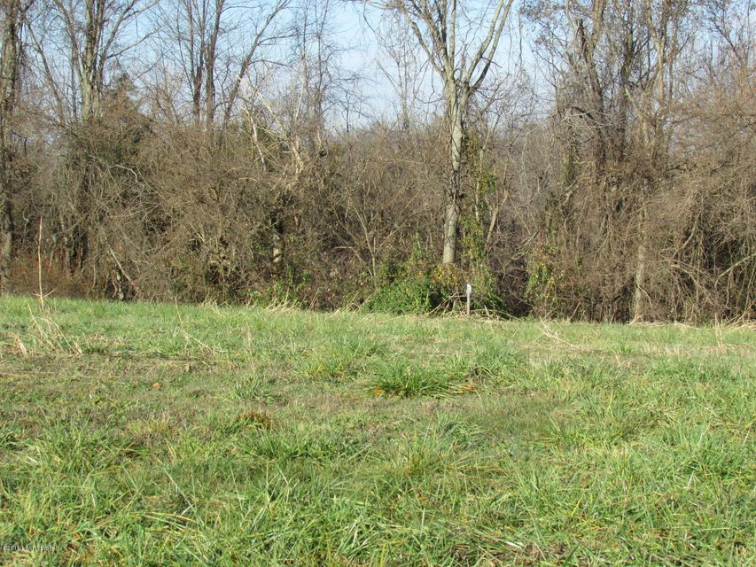 Land for Sale at 62 S Painted Leaf Shelbyville, Kentucky 40065 United States