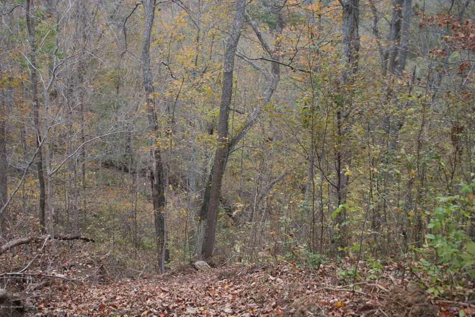 Additional photo for property listing at Tract 4&5 MORTON RIDGE  Bedford, Kentucky 40006 United States