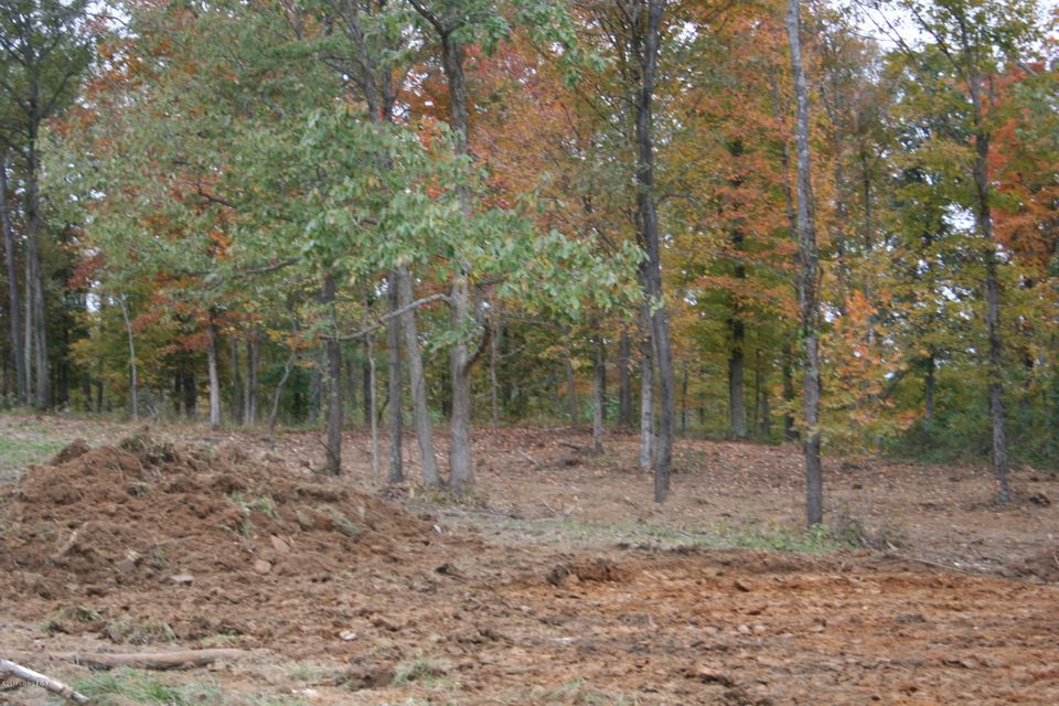 Land for Sale at Tract 4&5 MORTON RIDGE Bedford, Kentucky 40006 United States