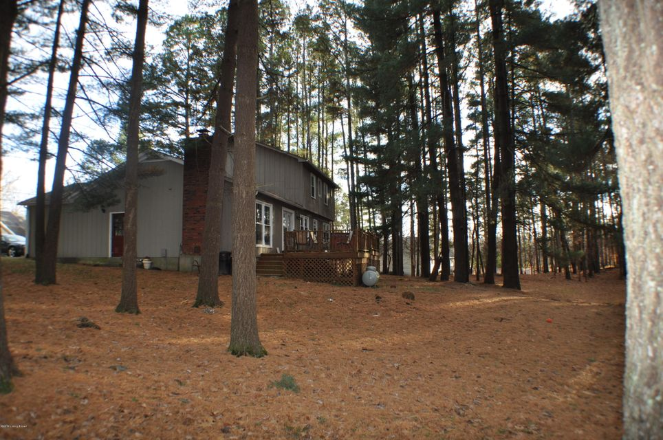 Additional photo for property listing at 266 Pine Ridge Drive  Brandenburg, Kentucky 40108 United States