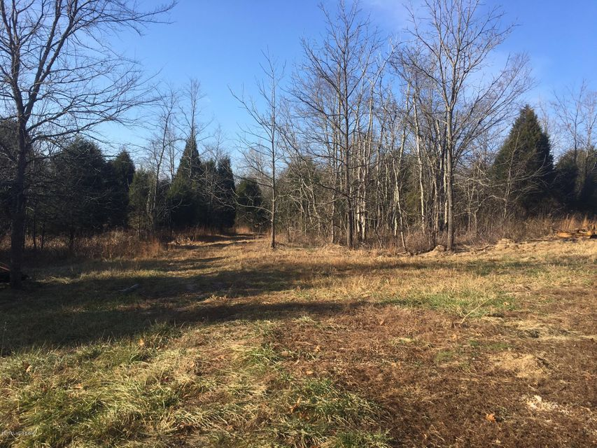 Land for Sale at 202 HIGHWAY 2780 Webster, Kentucky 40176 United States