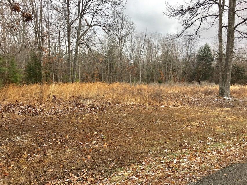 Additional photo for property listing at 29 Poplar Ridge  Cub Run, Kentucky 42729 United States