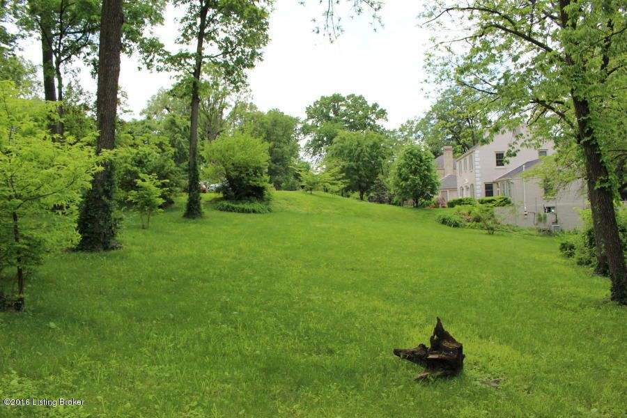 Additional photo for property listing at 20 Ridge  Louisville, Kentucky 40205 United States