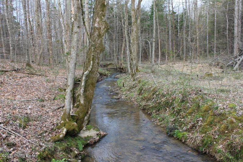 Land for Sale at Celina Tompkinsville, Kentucky 42167 United States