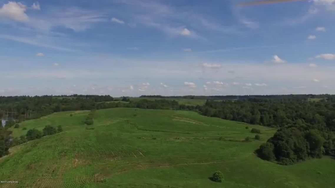 Land for Sale at Buffalo Lake Harned, Kentucky 40144 United States