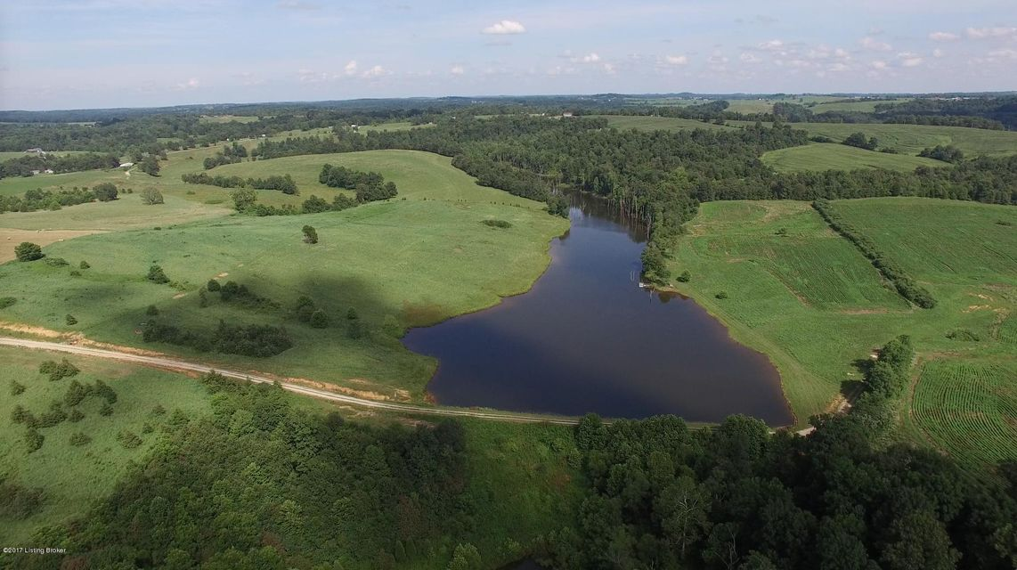 Additional photo for property listing at Buffalo Lake  Harned, Kentucky 40144 United States