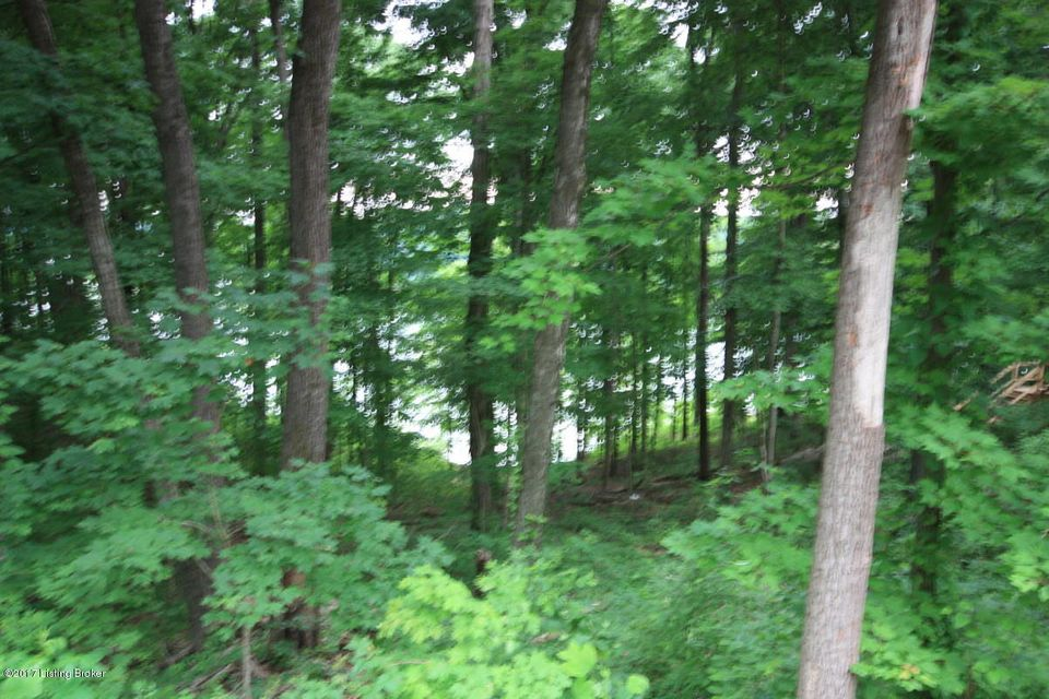 Additional photo for property listing at 20 Averi Gray Ridge  Mammoth Cave, Kentucky 42259 United States