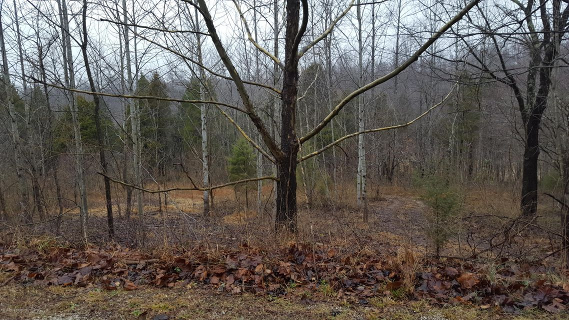 Land for Sale at 48 & 49 Lake Forest Shores Westview, Kentucky 40178 United States