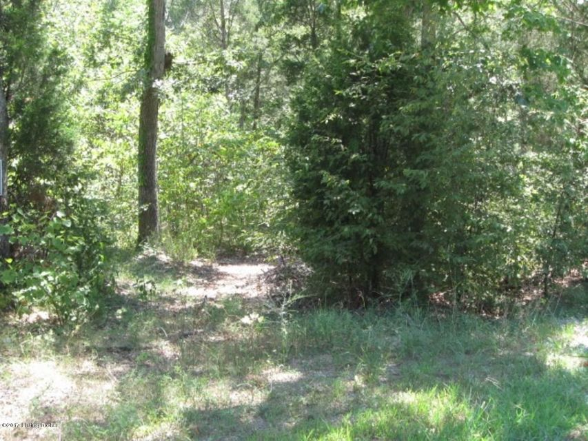 Additional photo for property listing at Lot 95 E Doe Valley  Brandenburg, Kentucky 40108 United States