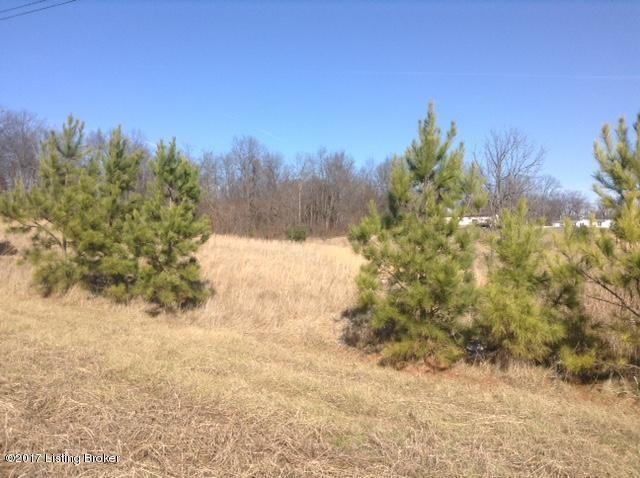 Land for Sale at 18 Chablis Ekron, Kentucky 40117 United States