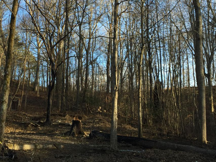 Additional photo for property listing at 115 Hollow Creek 115 Hollow Creek Mammoth Cave, Kentucky 42259 United States