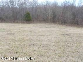 Land for Sale at 4820 HIGHWAY 1066 4820 HIGHWAY 1066 Bloomfield, Kentucky 40008 United States