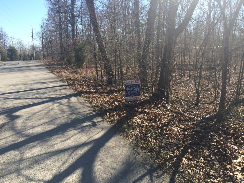 Additional photo for property listing at 500 AMBASSADOR SHORES  Leitchfield, Kentucky 42754 United States