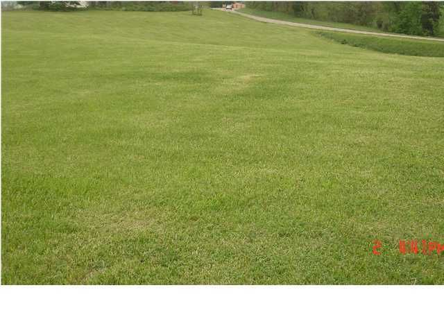 Land for Sale at 1 Deep Elm 1 Deep Elm Pendleton, Kentucky 40055 United States
