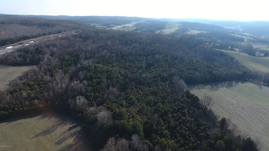Land for Sale at Noah Moody Bonnieville, Kentucky 42713 United States
