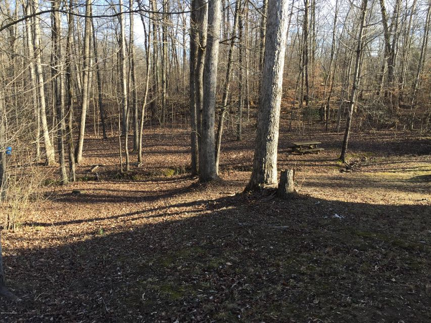 Additional photo for property listing at 208 Stroud Decker  Mammoth Cave, Kentucky 42259 United States
