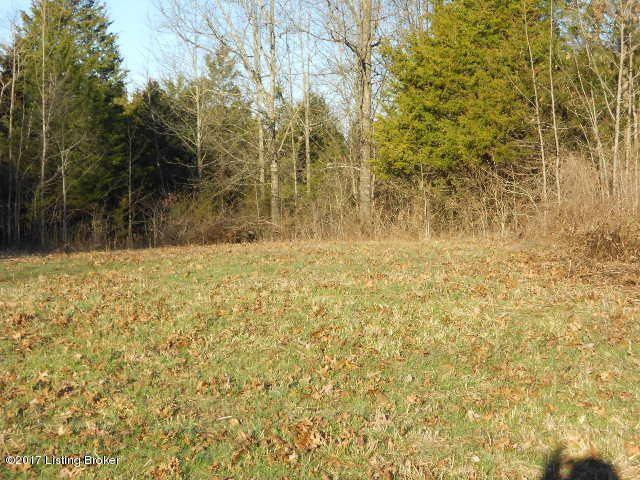 Additional photo for property listing at 1 New Liberty  Lawrenceburg, Kentucky 40342 United States