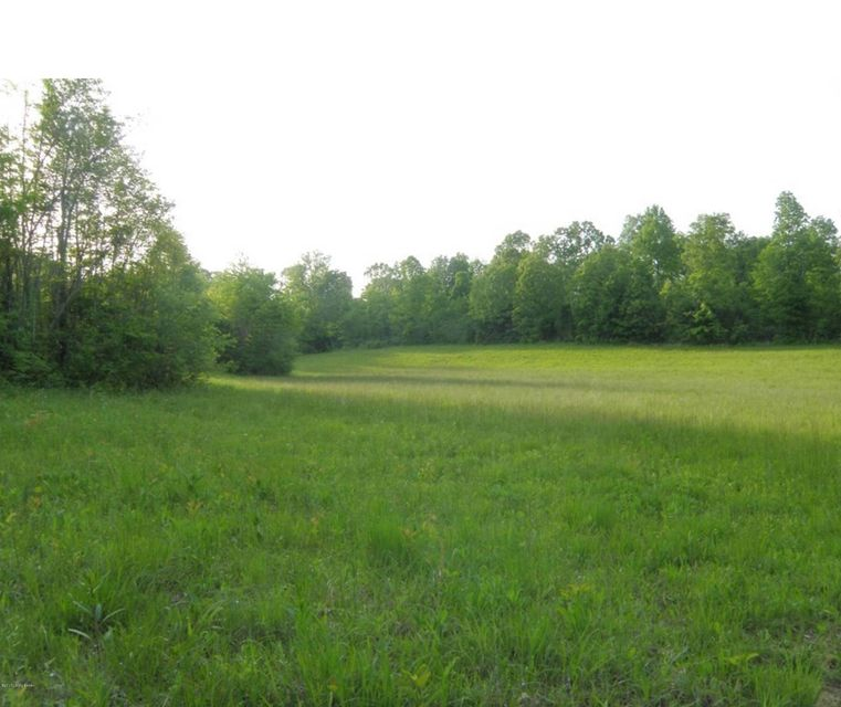 Additional photo for property listing at 3026 Old Mill Road  Brandenburg, Kentucky 40108 United States