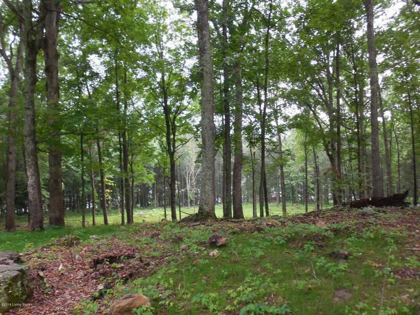 Additional photo for property listing at Daneshill  Clarkson, Kentucky 42726 United States