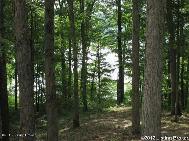 Land for Sale at 8 Greensward IV Clarkson, Kentucky 42726 United States