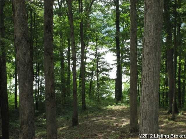 Land for Sale at 1 Greensward V Clarkson, Kentucky 42726 United States