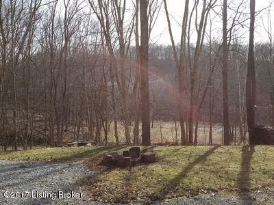 Additional photo for property listing at 102 WHITES RUN Road  Carrollton, Kentucky 41008 United States