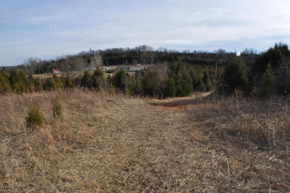 Additional photo for property listing at 113 Lonnie Haynes  Irvington, Kentucky 40146 United States