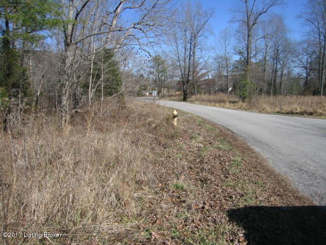 Land for Sale at 479 Pryor Valley Shepherdsville, Kentucky 40165 United States