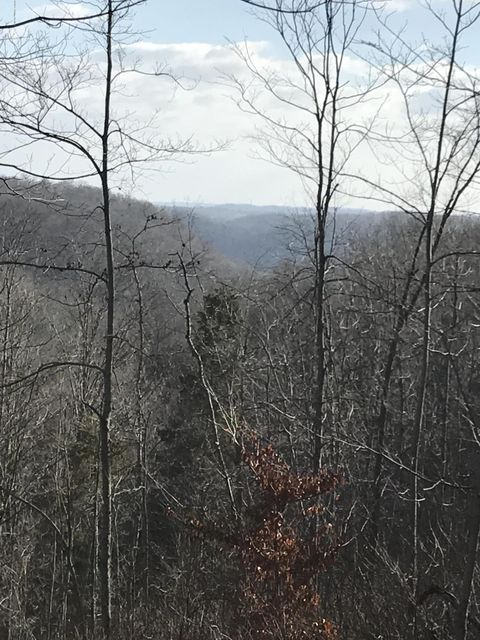 Land for Sale at 614 Millers Branch Bedford, Kentucky 40006 United States