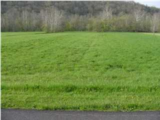 Land for Sale at 564 Smith 564 Smith Bedford, Kentucky 40006 United States