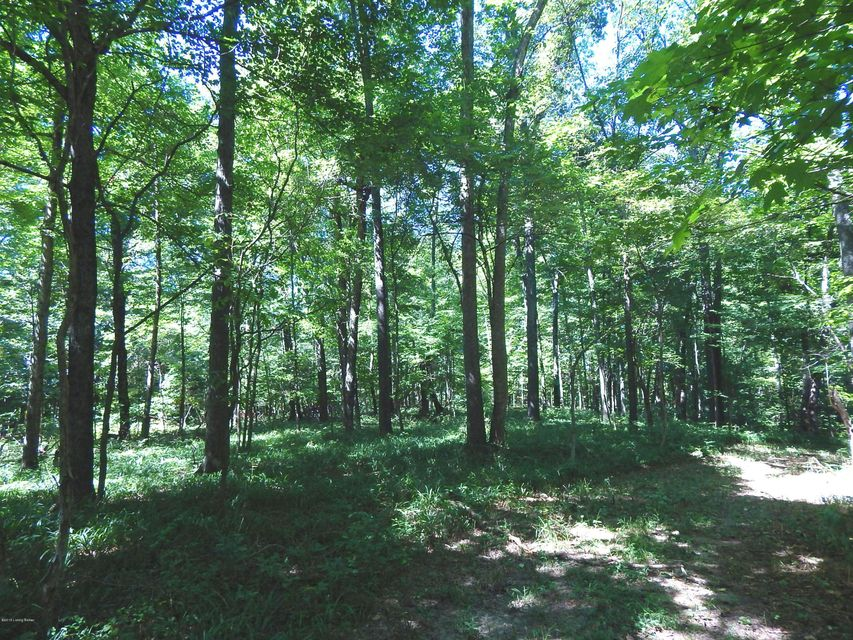 Land for Sale at 8210 W Hwy 42 Goshen, Kentucky 40026 United States