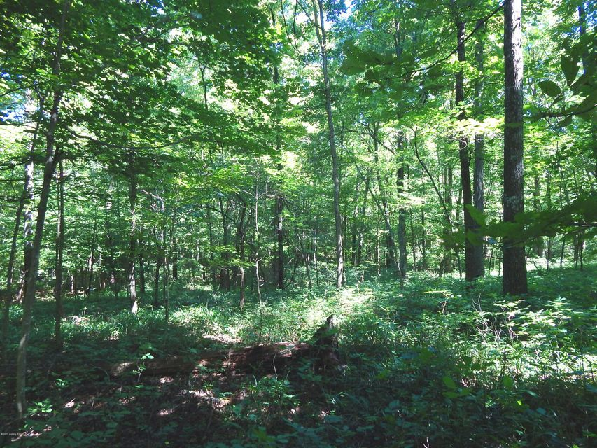 Additional photo for property listing at 8210 W Hwy 42  Goshen, Kentucky 40026 United States