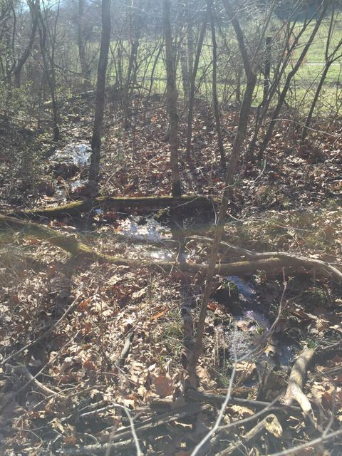 Additional photo for property listing at Lot 58 Doe Run  Taylorsville, Kentucky 40071 United States