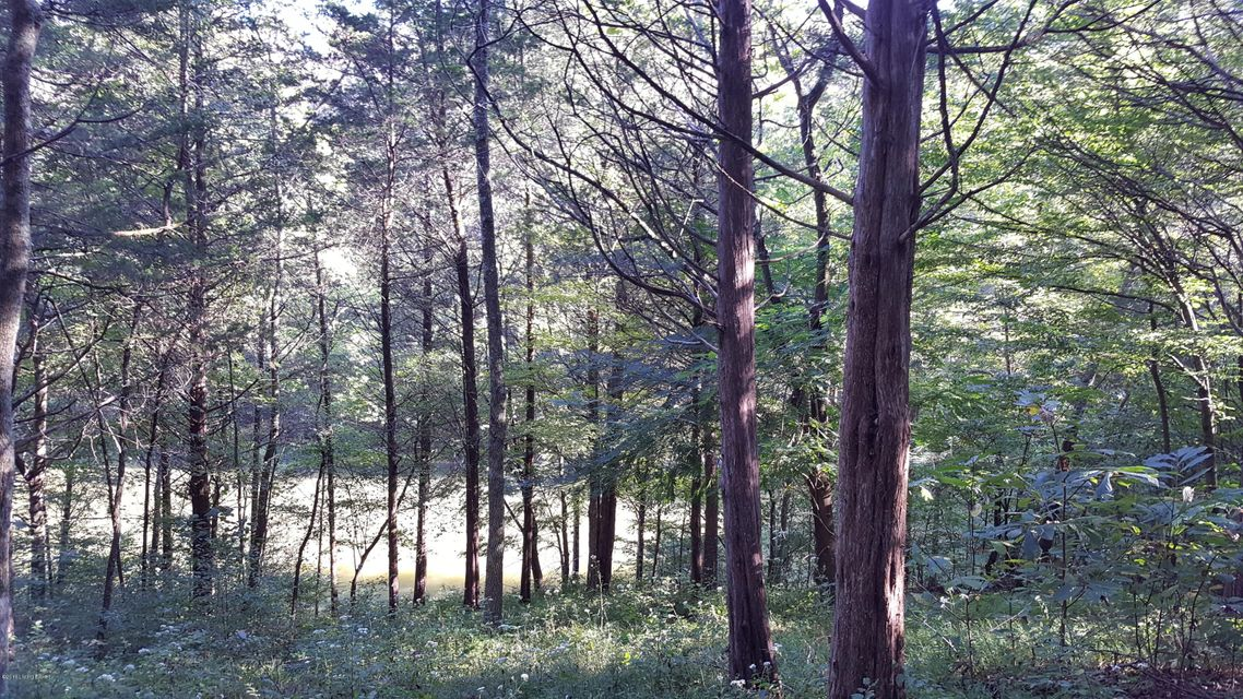 Additional photo for property listing at Woodduck  Willisburg, Kentucky 40078 United States