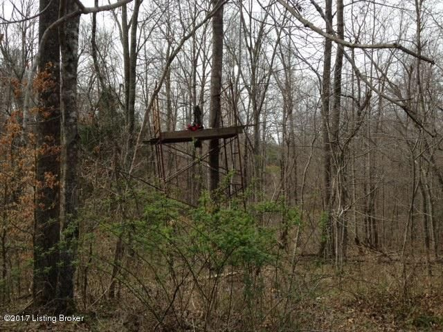 Additional photo for property listing at 2101 Frenchmans Knob  Bonnieville, Kentucky 42713 United States