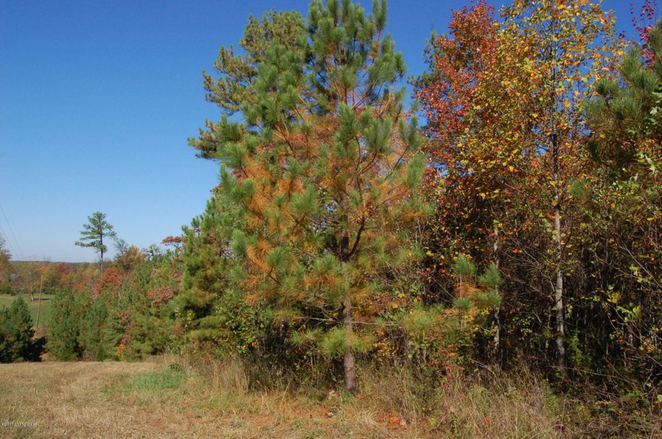 Land for Sale at Lot 351 Zaynate Louisville, Kentucky 40245 United States
