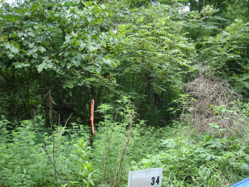 Land for Sale at Lot 34 Gannaway Lot 34 Gannaway Leitchfield, Kentucky 42754 United States