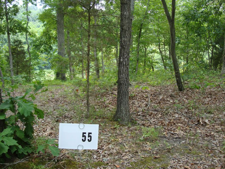 Land for Sale at Lot 55 Gannaway Leitchfield, Kentucky 42754 United States
