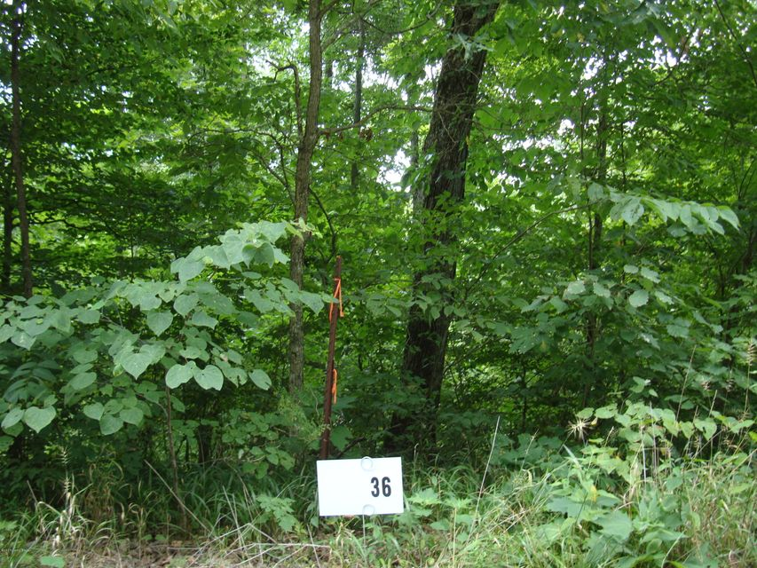 Land for Sale at Lot 36 Gannaway Lot 36 Gannaway Leitchfield, Kentucky 42754 United States