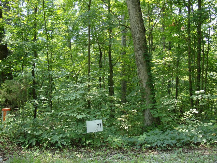 Land for Sale at Lot 77 Gannaway Lot 77 Gannaway Leitchfield, Kentucky 42754 United States
