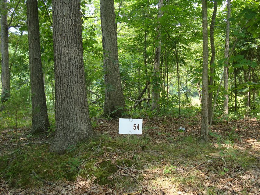 Land for Sale at Lot 54 Gannaway Leitchfield, Kentucky 42754 United States