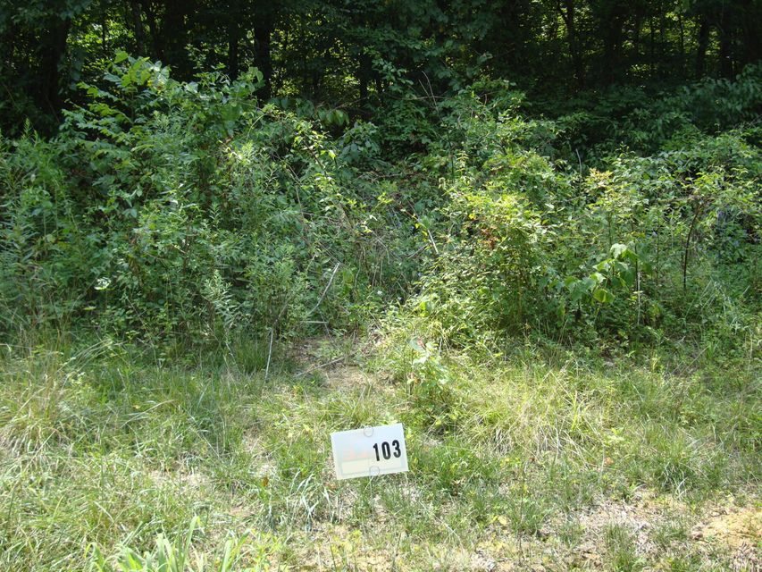 Land for Sale at 103 Gannaway Leitchfield, Kentucky 42754 United States