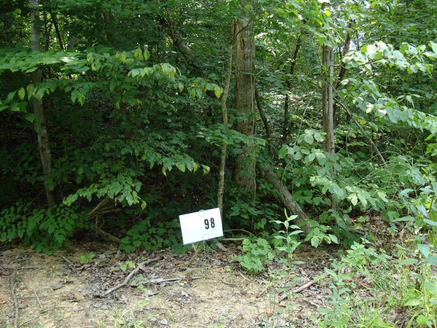 Land for Sale at Lot 98 Gannaway Leitchfield, Kentucky 42754 United States