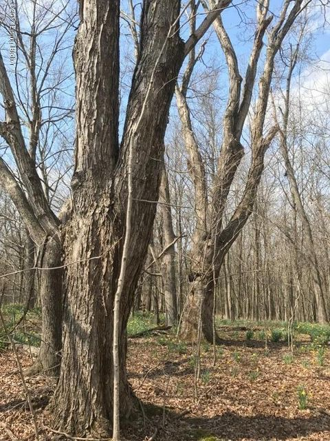 Additional photo for property listing at 5961 Mt Eden 5961 Mt Eden Shelbyville, Kentucky 40065 United States