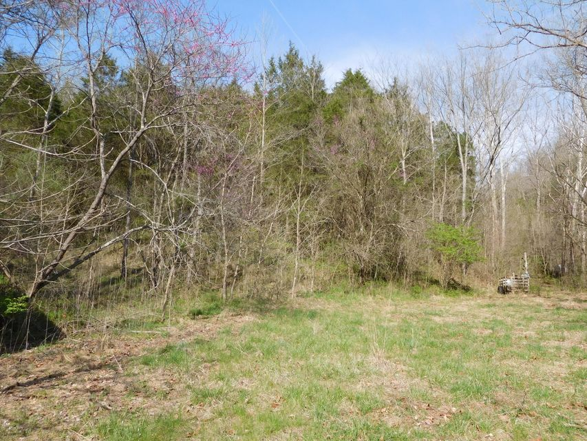 Land for Sale at W Hwy 524 Westport, Kentucky 40077 United States