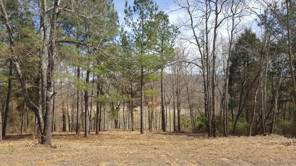Land for Sale at Lot 17 Woods of Lakeview Falls Of Rough, Kentucky 40119 United States