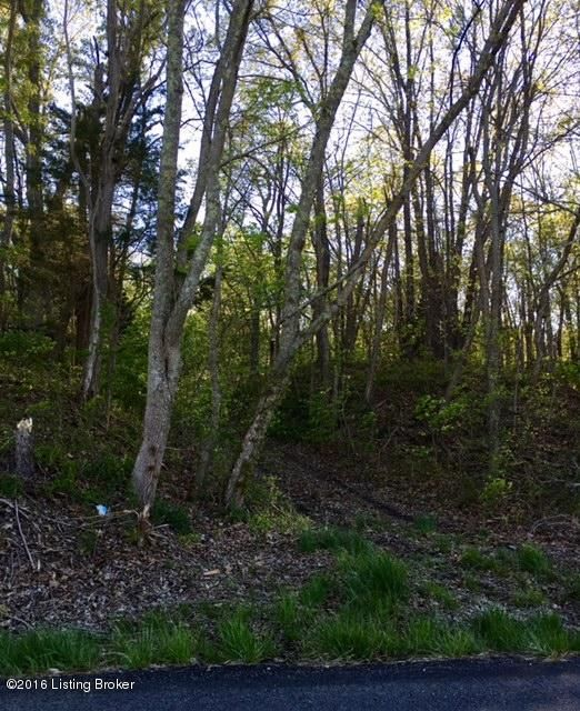 Additional photo for property listing at lots1,2,3 Youngers Creek lots1,2,3 Youngers Creek Elizabethtown, Kentucky 42701 United States
